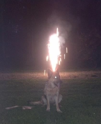 GSD fireworks