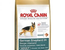 What we feed our German Shepherds