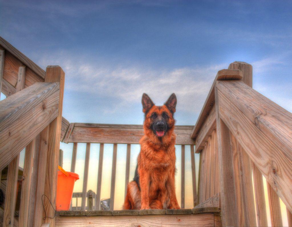 Aura at the beach