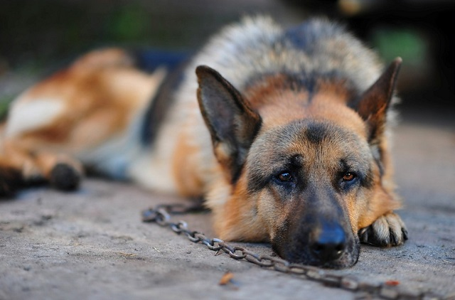 tethered GSD