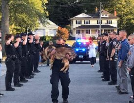 Middletown Police say Goodbye to K9 Hunter, a German Shepherd who Served Connecticut