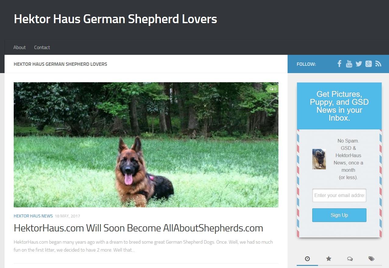 What Happened To Hektor Haus German Shepherds Hektorhauscom