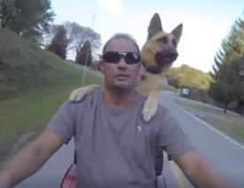 "Pennsylvania Pup ""Nakita"", a German Shepherd, Rides a Motorcycle"