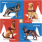 USPS German Shepherd Dog Stamps Coming in 2019